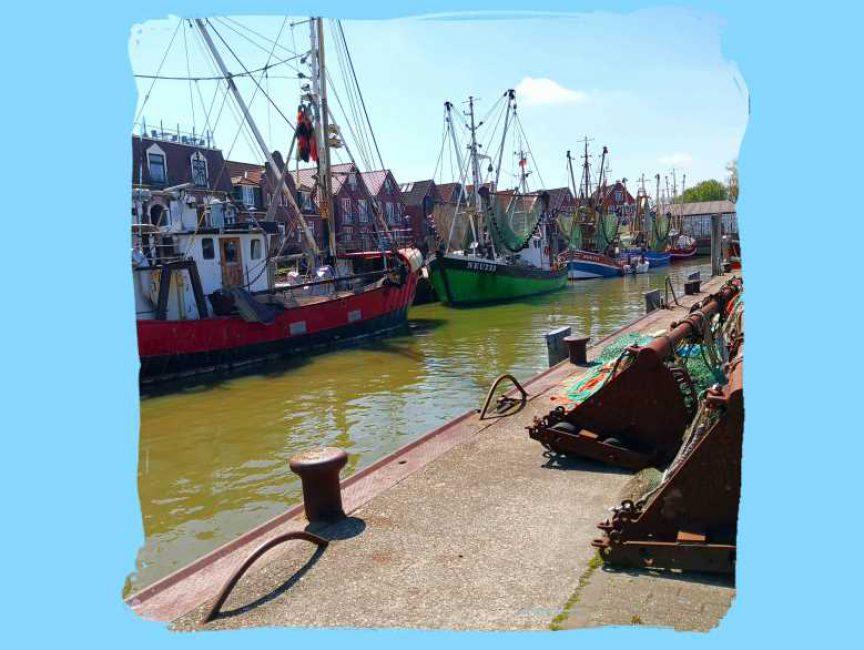1Kutter Hafen1